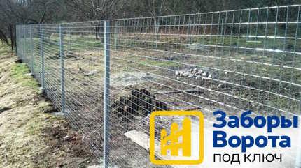 Забор из сварной сетки 2